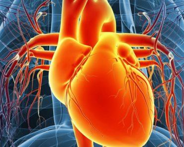 Prayer for Heart Ailments